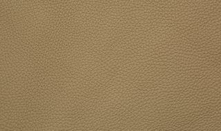 Oxford - Taupe